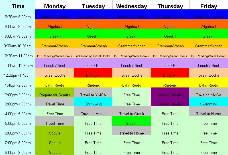 Salamander's schedule