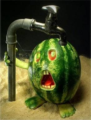 Food art watermelon 1